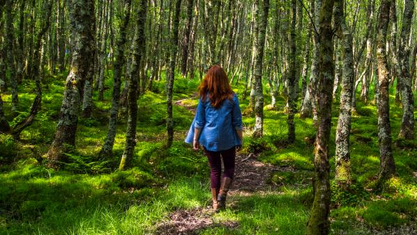 image of a woman walking through a forest