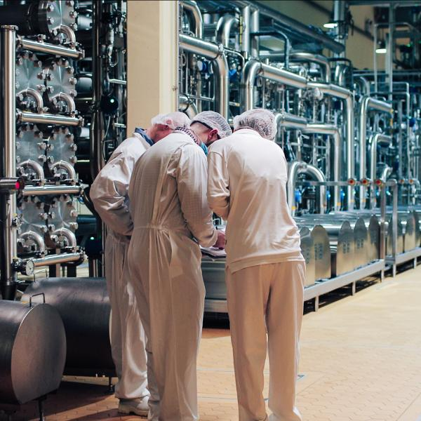 Three employees in white overalls working in a Glanbia Ireland factory
